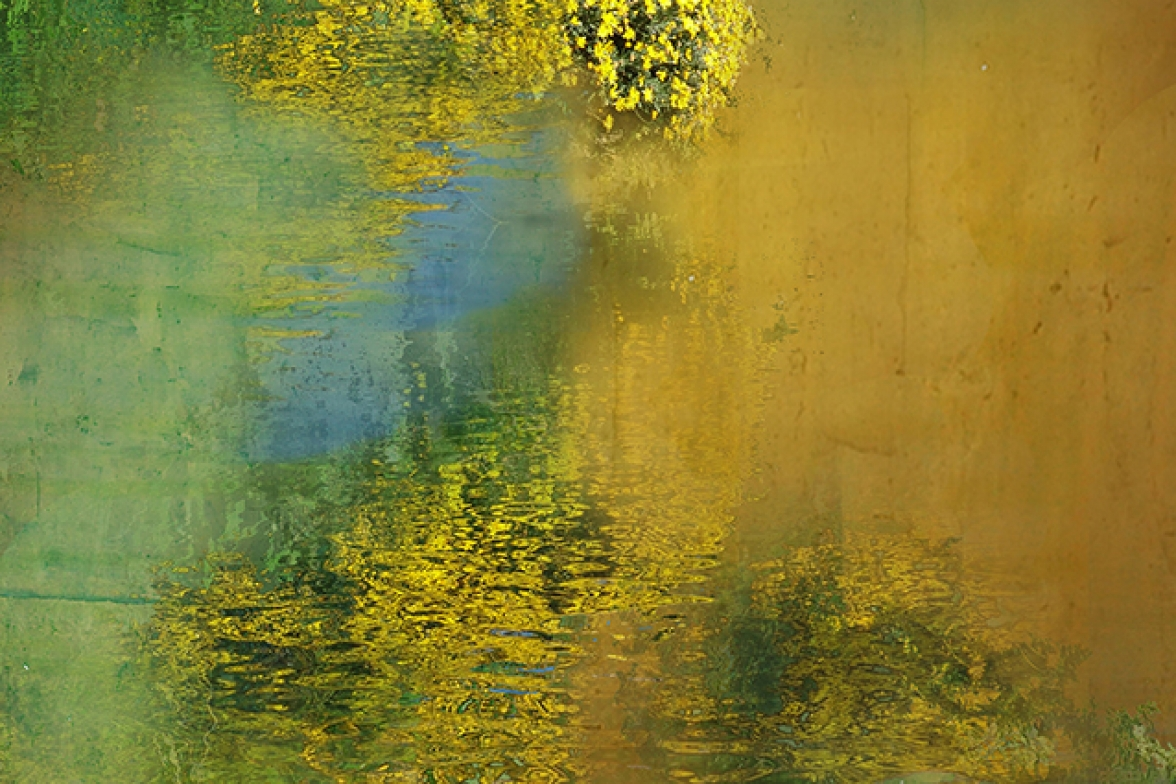 Monet's garden 2 .   93 cm x 204 cm  .                From 420 €.