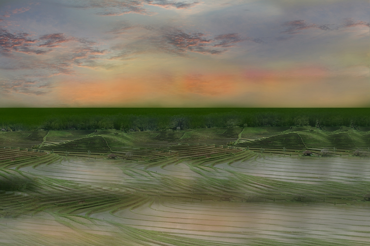 Bali rice fields 2 .   150 cm  x 100 cm.     From 300 € .