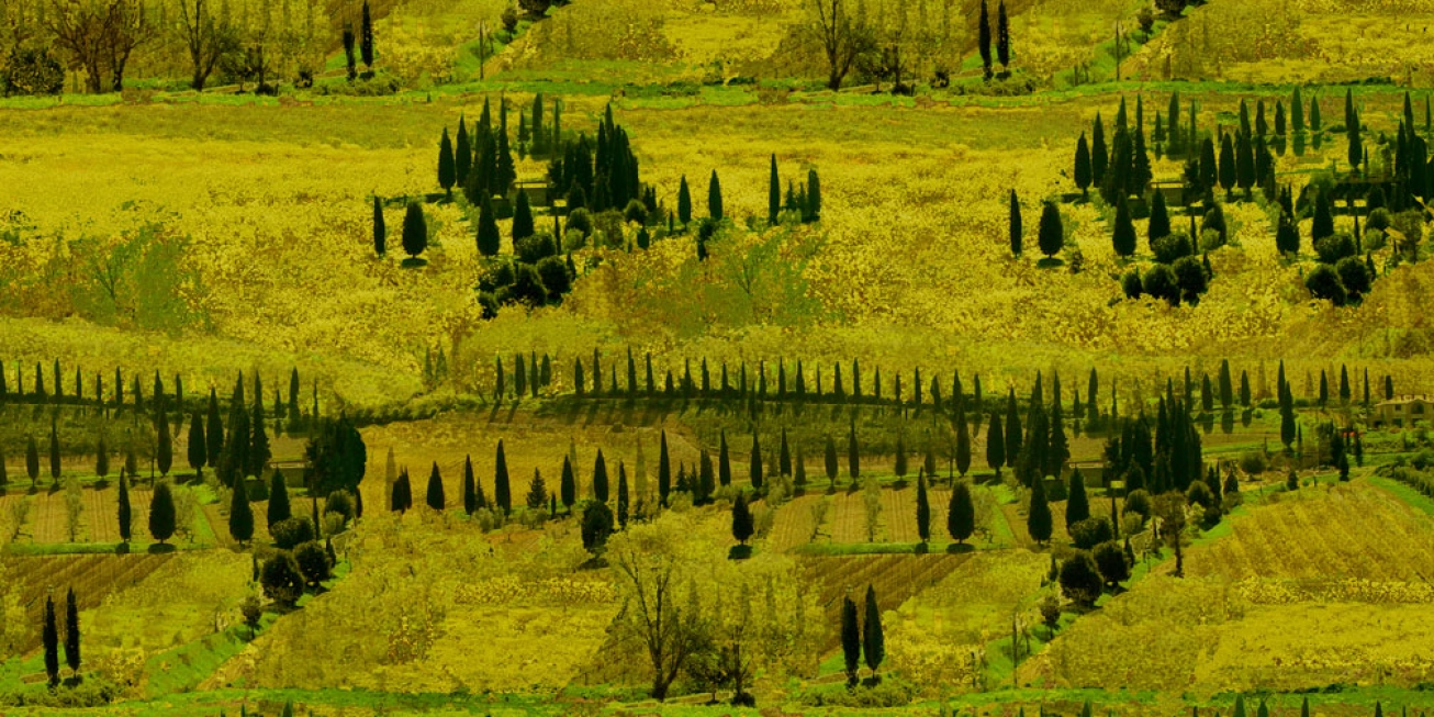 Tuscany 2.      137 cm x 102 cm .                           From 300 €.