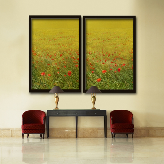 Red Poppy Field Series
